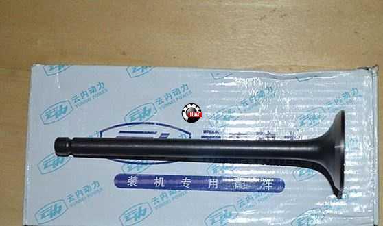 Dong-Feng DF47/1074 (Донг Фенг) Клапана выпускные