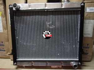 Dong-Feng DF25 (Донг Фенг) 1032/Богдан 25 Радиатор охлаждения основной